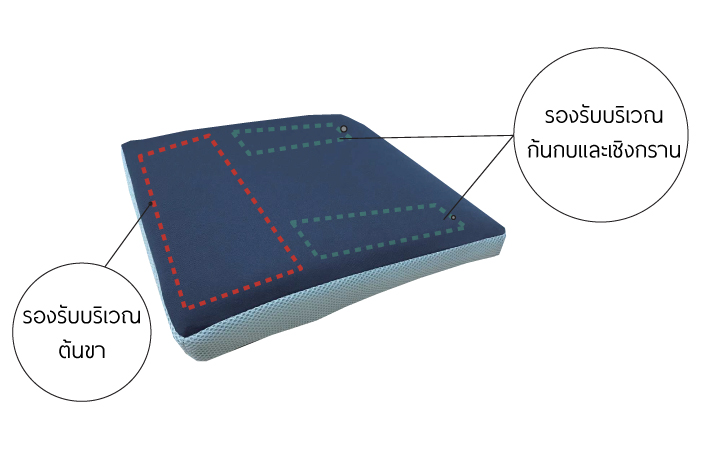 ภาพกราฟฟิคแสดงการทำงานของ B-Balance newcushion ช่วยรองรับต้นขา ก้นกบและเชิงกราน