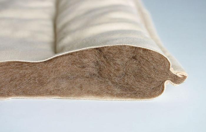 ภาพตัดด้านข้างของผ้าห่มขนอูฐ camel futon ภายในเป็นขนอูฐ 100%