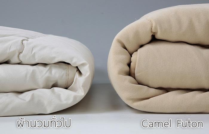 ภาพเปรียบเทียบความนุ่มฟูของผ้าห่มขนอูฐ camel futon กับผ้าห่มทั่วไป